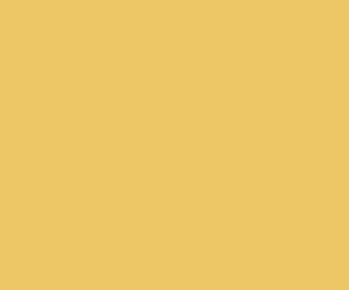 Easy Asia